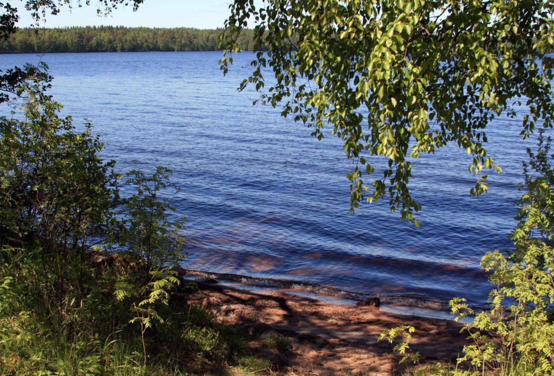 задача грибовское озеро фото жители предлагали